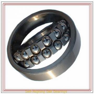 FAG 2304-2RS-TVH Self-Aligning Ball Bearings