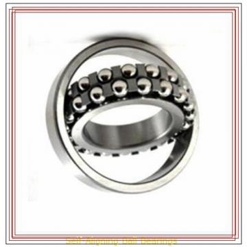 NSK 1209 TNG Self-Aligning Ball Bearings