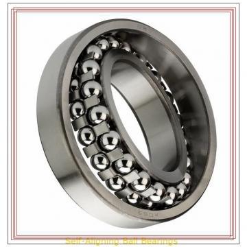 NSK 1305 TN Self-Aligning Ball Bearings